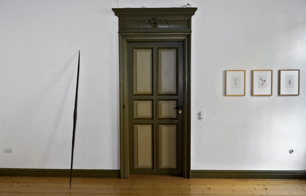 links: Evelyn Möcking, Oryx, 2015, Bronze, 0,06 x 2,25 x 0,06 m  rechts: Daniel Nehring, O.T., (3 Naturstudien), 2016, Tusche auf Folie, 21 x 14 cm